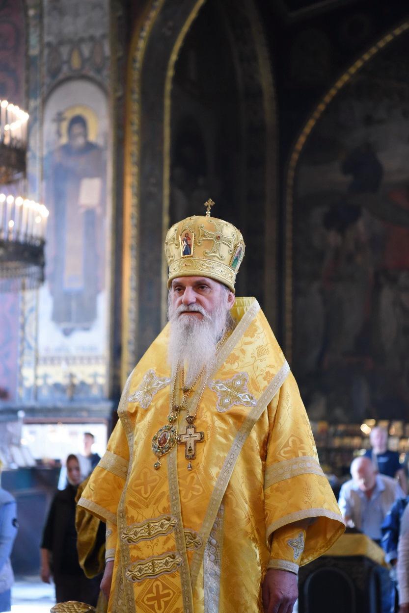 Єпископ Васильківський Андрій: Томос, – що ми отримали, і якою ціною